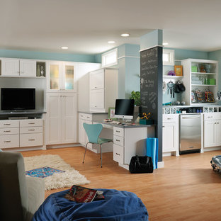 Inspiration for a transitional walk-out medium tone wood floor basement remodel in DC Metro with blue walls and no fireplace