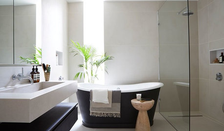 How Do I... Choose Plants for My Bathroom?