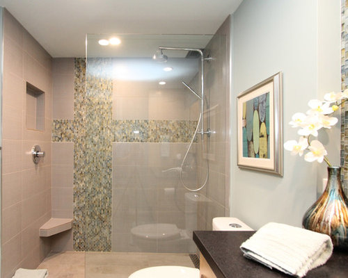 Kohler Hydrorail Home Design Ideas, Pictures, Remodel and Decor
