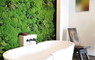 Parla l'Esperto: Come Installare un Muro Vegetale a Casa Propria