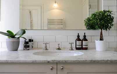 Why Your Bathroom Needs a House Plant