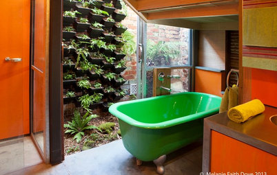 On the Up and Up: Expert Advice for Growing a Green Wall
