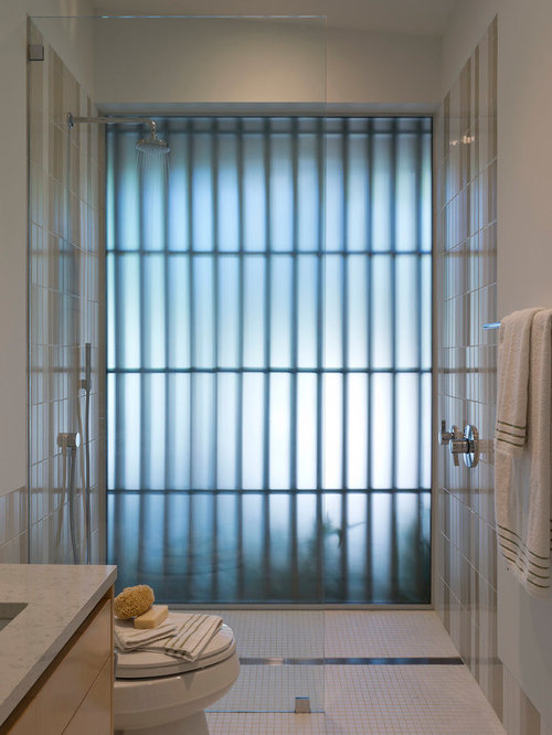 Best Frosted Glass Wall Design Ideas & Remodel Pictures | Houzz