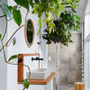 This Is How Plants Can Transform Your Bathroom