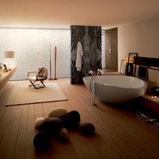 Modern Bathroom by Hansgrohe USA