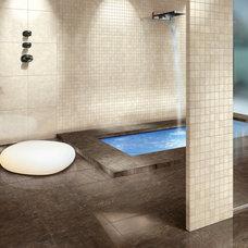 Asian Bathroom by CheaperFloors