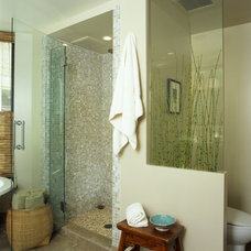 Contemporary Bathroom Bathroom Remodels
