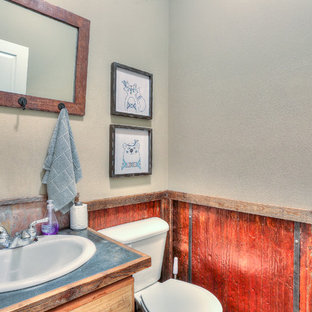 This is an example of a small country bathroom in Other with distressed cabinets, flat-panel cabinets, a one-piece toilet, a drop-in sink, stainless steel benchtops and grey benchtops.