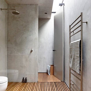 Example of a mid-sized minimalist medium tone wood floor walk-in shower design in Melbourne with gray walls