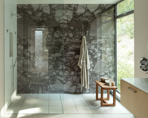 Modern Bathroom Design Ideas gray small bathroom decorating photo Best Modern Bathroom Design Ideas Remodel Pictures Houzz