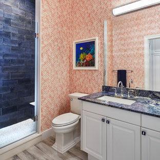 マイアミの中サイズのトランジショナルスタイルのおしゃれな子供用バスルーム (レイズドパネル扉のキャビネット、白いキャビネット、アルコーブ型シャワー、分離型トイレ、青いタイル、セラミックタイル、磁器タイルの床、アンダーカウンター洗面器、珪岩の洗面台、開き戸のシャワー、青い洗面カウンター) の写真