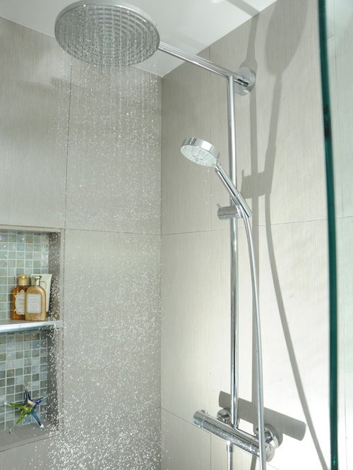 hansgrohe raindance showerhead ideas pictures remodel