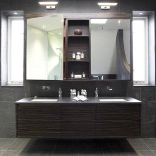 Bathroom Mirror Storage Houzz