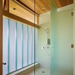 Privacy Glass Houzz