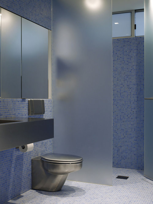 Frosted Glass Toilet Partition Home Design Ideas Pictures