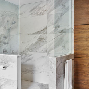 75 Beautiful Walk-In Shower Pictures & Ideas - January, 2021 | Houzz