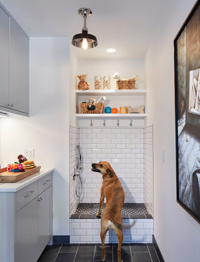 How to install a dog washing station scandinavian bathroom by martha ohara interiors solutioingenieria Image collections