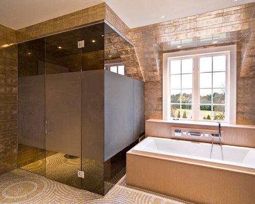 Opaque Shower Door Houzz