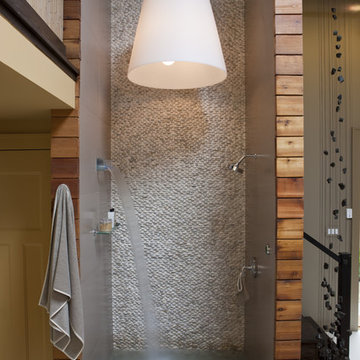 eco Friendly Home Spa with two-story shower