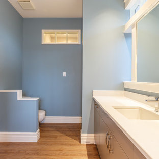 Bathroom - large contemporary master bathroom idea in Vancouver with flat-panel cabinets, gray cabinets and blue walls