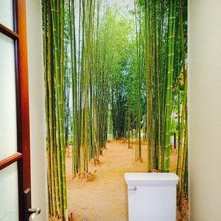 Imagen de cuarto de baño con ducha, de estilo zen, pequeño, con puertas de armario rojas, bidé y paredes verdes
