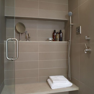 Example of a trendy brown tile and porcelain tile alcove shower design in Detroit with a niche
