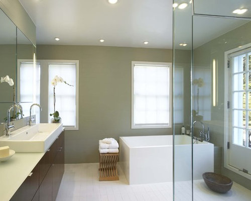 Bathroom Paint Color Home Design Ideas Pictures Remodel