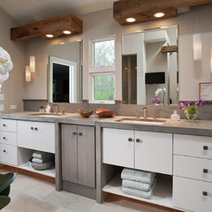contemporary bathroom by Susan Fredman Design Group