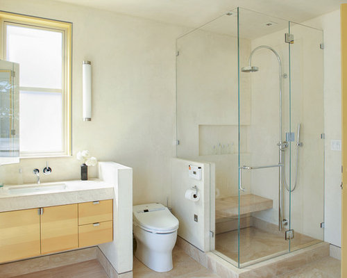 Shower Next To Toilet Home Design Ideas Pictures Remodel