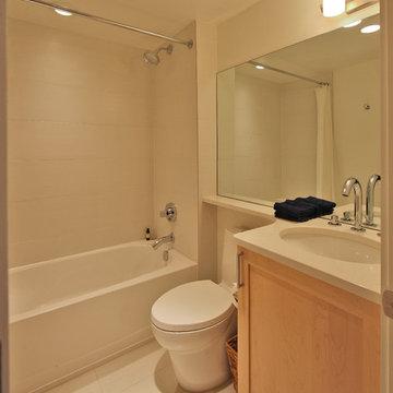 Guest Bathroom Remodel, Washington DC