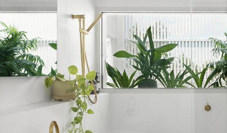 Plocka in växter i badrummet – expertens 13 bästa tips
