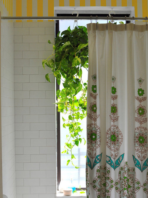 Indoor hanging plants houzz - How to hang plants in front of windows ...