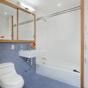 Harlem Residence Children's Bath