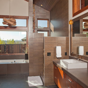 Walk In Bathroom Design Ideas, Remodels & Photos