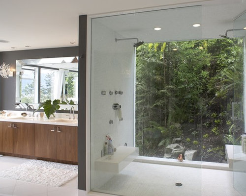 Best One Way Glass Design Ideas & Remodel Pictures | Houzz