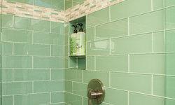 Historic Whole House Renovation - Master Shower