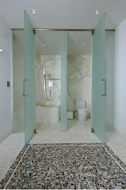 Separate Shower And Toilet Home Design Ideas Pictures