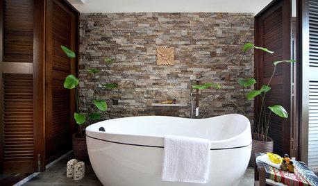 バスルームで観葉植物を育てるポイント