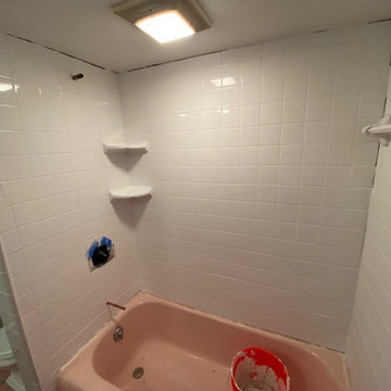 JOIST REPAIR AND TUB TILE SURROUND REPLACEMENT/INSTALL