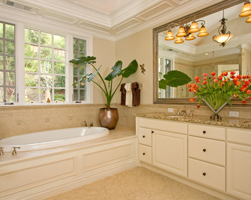 tray ceiling bathroom design ideas, remodels  photos,