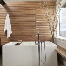 Nitin's Bathroom Ideas