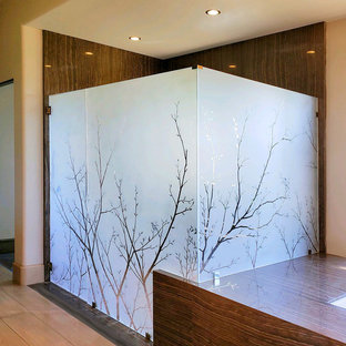 Large etched glass shower door