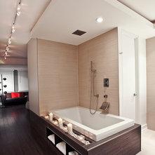 https://st.hzcdn.com/fimgs/bc013d5f0e07dcdf_1722-w221-h221-b0-p0--modern-bathroom.jpg