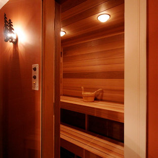 Lower level bathroom features a sauna