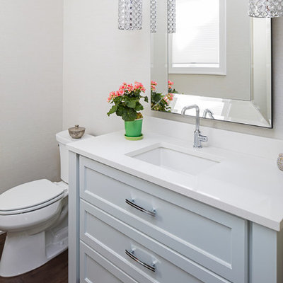 Example of a small transitional 3/4 dark wood floor bathroom design in Minneapolis with recessed-panel cabinets, gray cabinets, a two-piece toilet, gray walls, an undermount sink and solid surface countertops