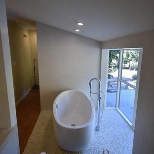 Idée De Décoration Pour Une Grande Salle De Bain Principale Minimaliste  Avec Un Placard à Porte