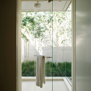 Example of a trendy walk-in shower design in San Francisco