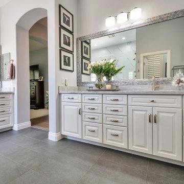 Master Bathroom Remodel (Collins)