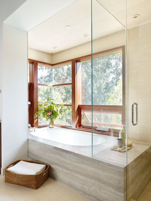 Tub And Shower Side By Side Home Design Ideas Pictures