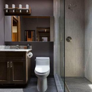 Kleines Modernes Badezimmer En Suite mit Schrankfronten mit vertiefter Füllung, hellbraunen Holzschränken, Duschnische, Toilette mit Aufsatzspülkasten, grauen Fliesen, Porzellanfliesen, lila Wandfarbe, Porzellan-Bodenfliesen, Unterbauwaschbecken, Quarzwerkstein-Waschtisch, grauem Boden und offener Dusche in Milwaukee
